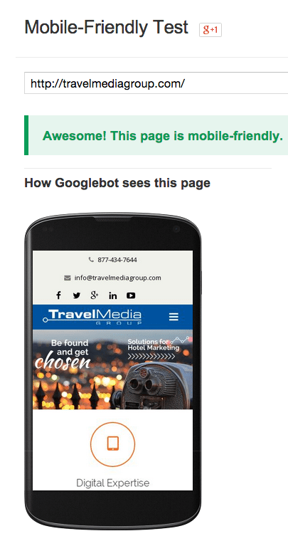 Google's Mobile-Friendly Test can help pinpoint issues in your mobile website.