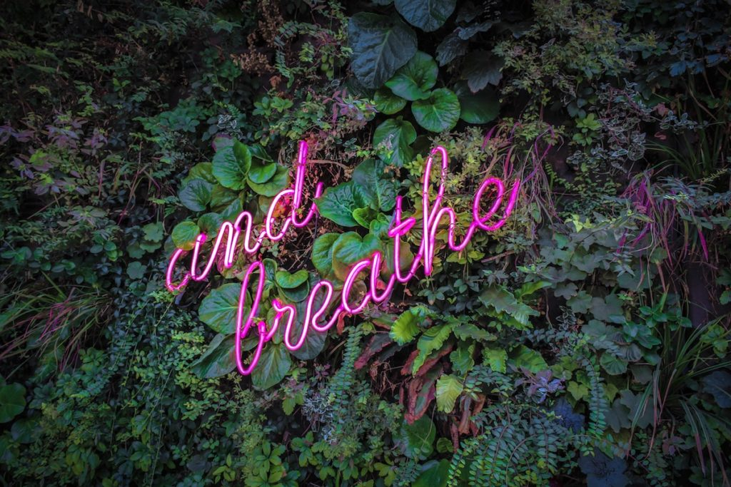 "Wall covered with plants and a pink neon light that says ""and breathe"" in cursive font"